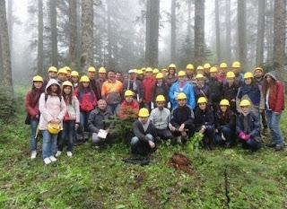 orman mühendisliği kadroları