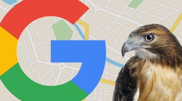 Google Hawk: Update Algoritma Google Terbaru