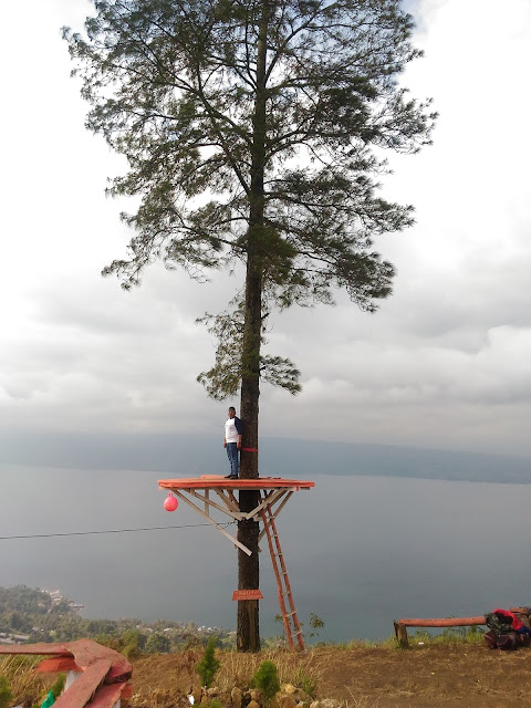 wisata kekinian rumah pohon bis