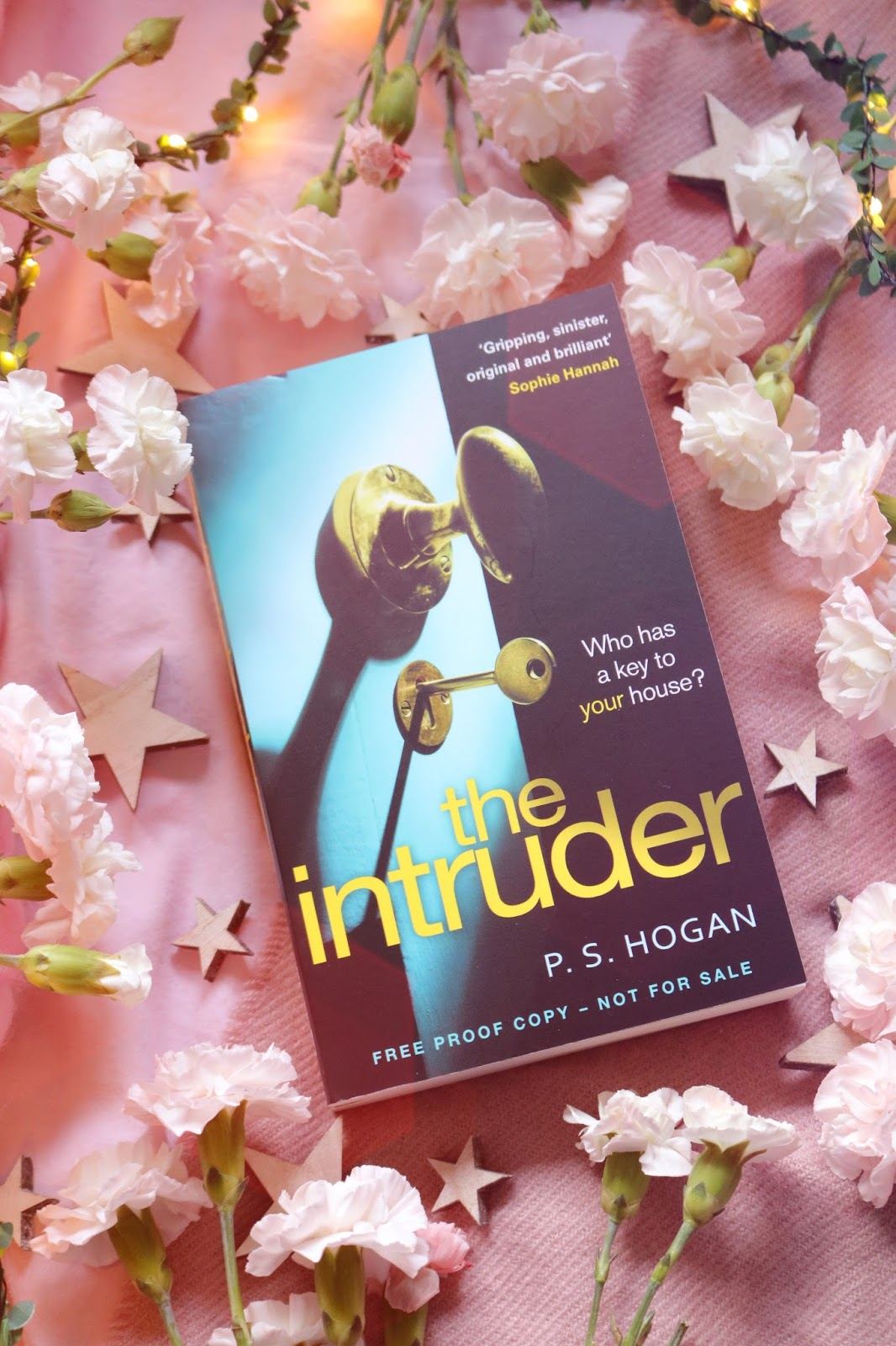 Blog Tour: The Intruder by P. S Hogan
