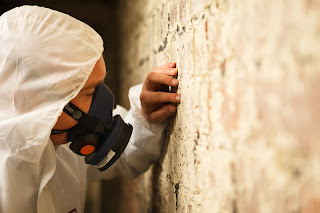 Why You Should Make Sure Your Building Has An Asbestos Survey