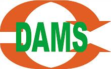 Logo of DAMS coaching