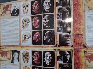"""Fotografie a lucrărilor artistului plastic Eduard Olaru intitulat """"Proiectul descendenţei omului"""", fotografia este proprietatea mea personală, toate drepturile rezervate"""