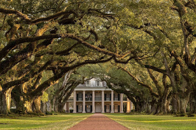 Oak Alley Planatation Louisiana_by_Laurence Norah-36
