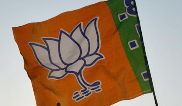 flag-of-bjp-image