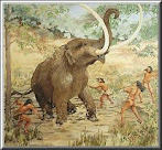 ricerca, testo e immagini, sul paleolitico