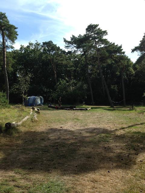tent op ruime bosplek