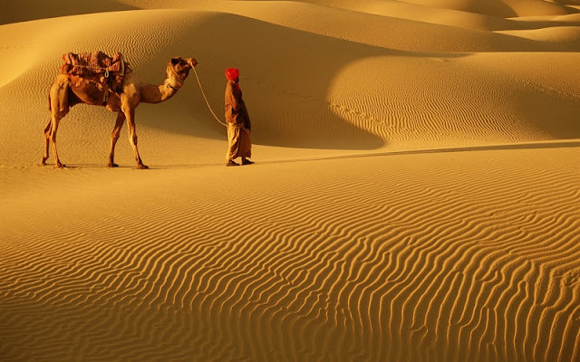 Sand Dunes, Rajasthan