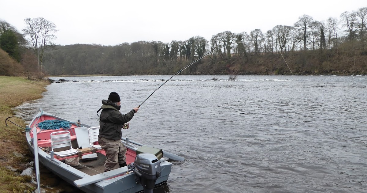 Salmon fishing scotland salmon fishing scotland fly for Salmon fishing colorado