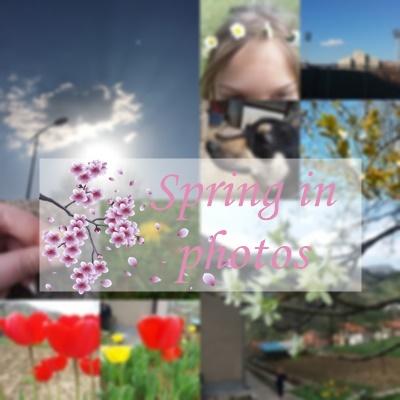 Spring in photo 🌷🌸