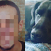 An American  Arrested After Having SEX With a Dog Black Lab.