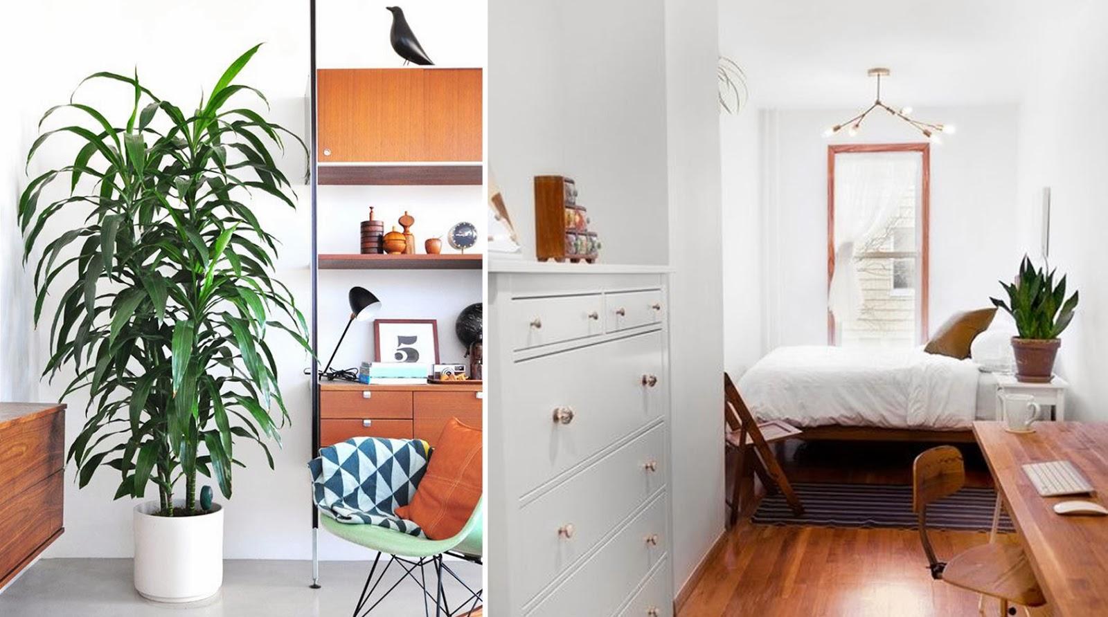 habitaciones con plantas_ameiseblog