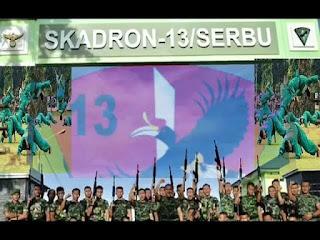 Skuadron 13/Serbu