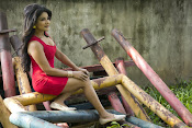 Sakshi Agarwal latest photos-thumbnail-1