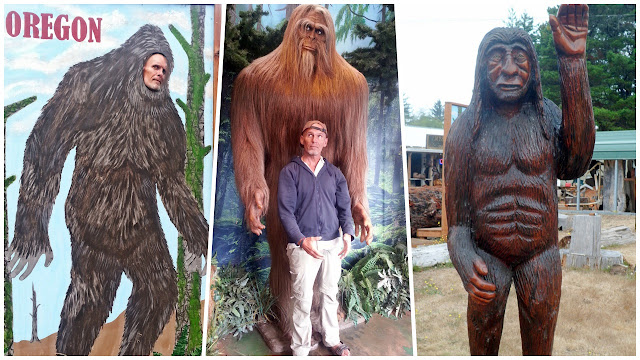 North America's mysterious Sasquatch...