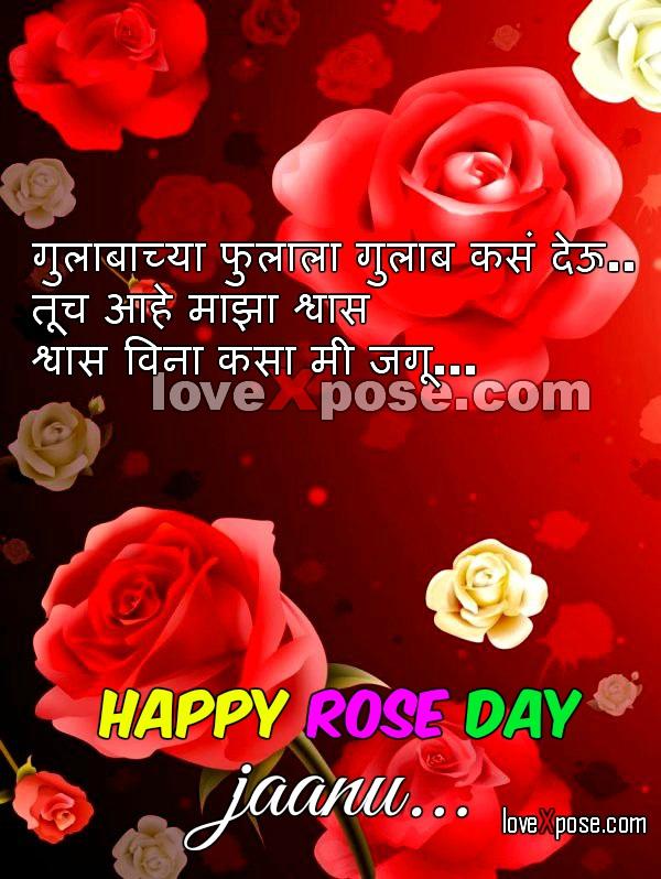 Rose Day Marathi wallpaper