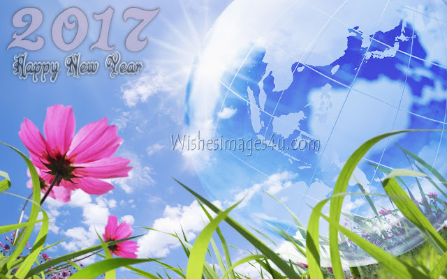 Happy New year 2017 HD Nature Pictures  Download Free