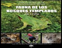 vertebrados-terrestres-del-bosque-templado-del-sur-de-Chile