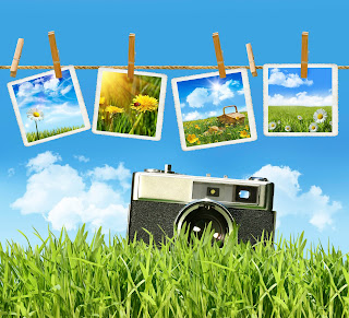 Photo of spring photographs hanging on a clothesline above a camera sitting in the grass