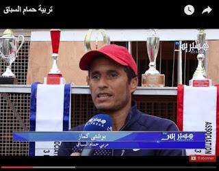 فيديو لهسبريس حول الحمام الزاجل بالمغرب