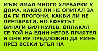 ВИЦОВЕ ~ Мъж имал много хлебарки у дома