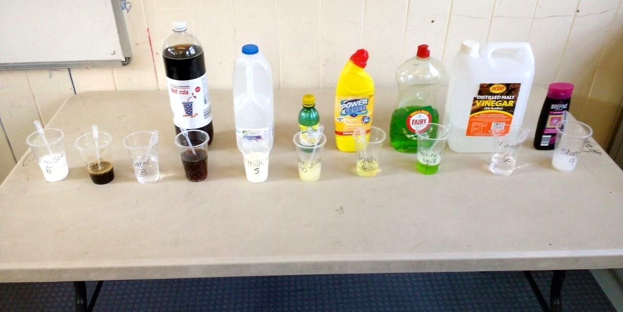 a muslim homeschool: Testing for Acids and Alkali with cabbage water ...