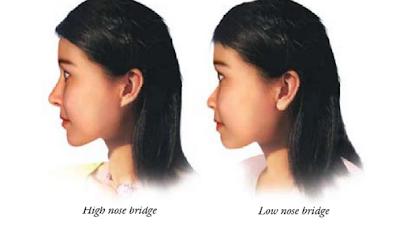 Xiang mian pdf