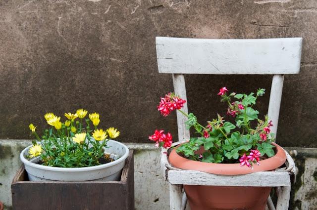 Đem thiên nhiên vào nhà với những ý tưởng độc đáo