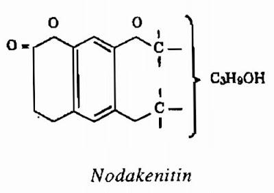 Thành phần hóa học Tiền Hồ - Peucedanum decursivum - Nguyên liệu làm thuốc Chữa Cảm Sốt