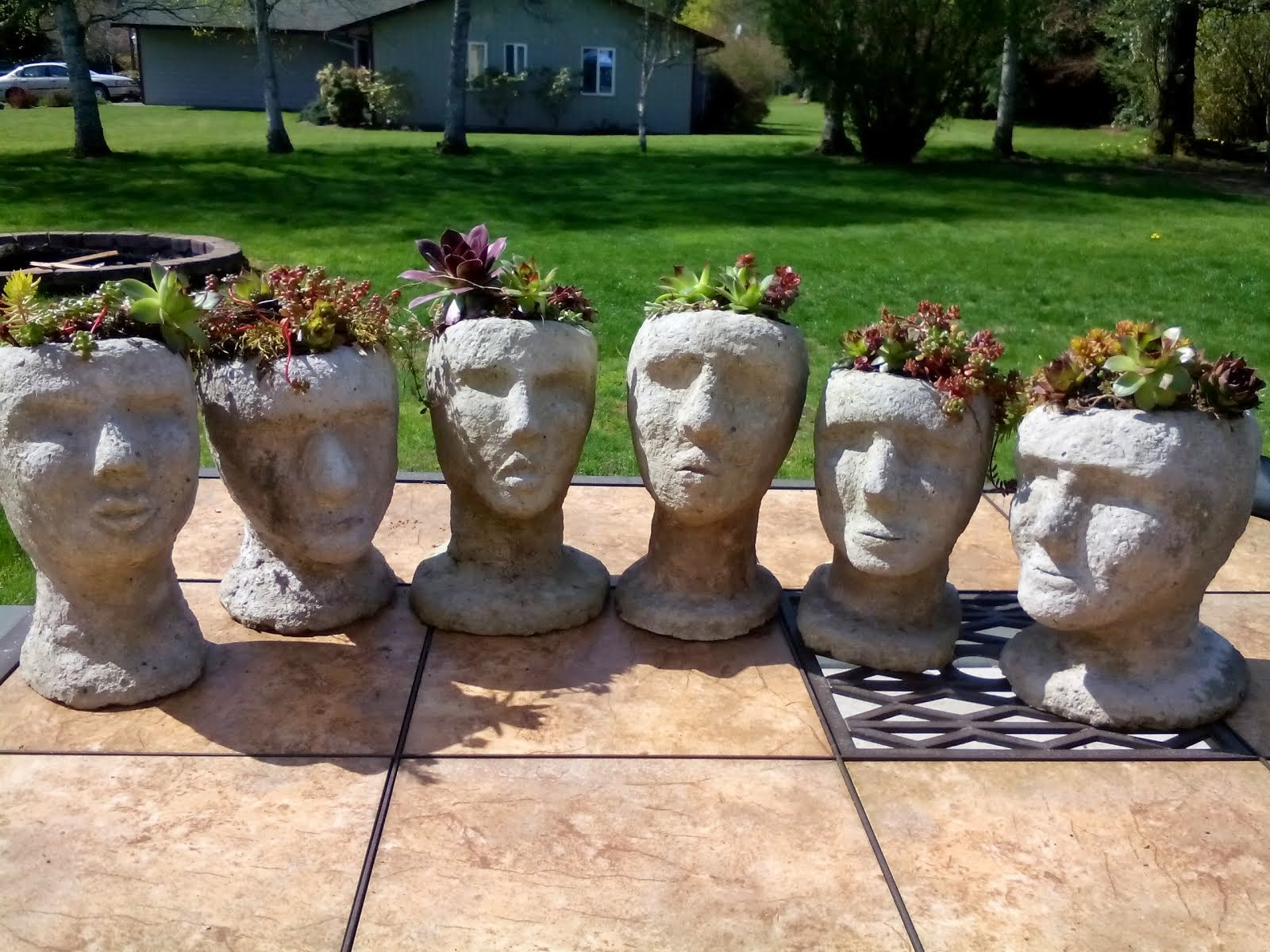 Planter Heads Snohomish Seattle Garden Art Outdoor Decor At Totally