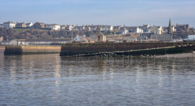 Photo of misty morning sunshine over Maryport from the basin