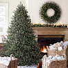 Balsam Hill™ Blue Spruce Artificial Christmas Tree, 6.5 Feet, Clear