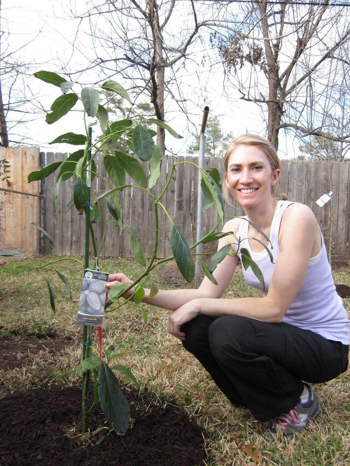 Meet The Matterns Adventures In Gardening