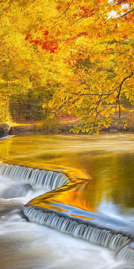 Autumn at Bond Falls State Park, Michigan