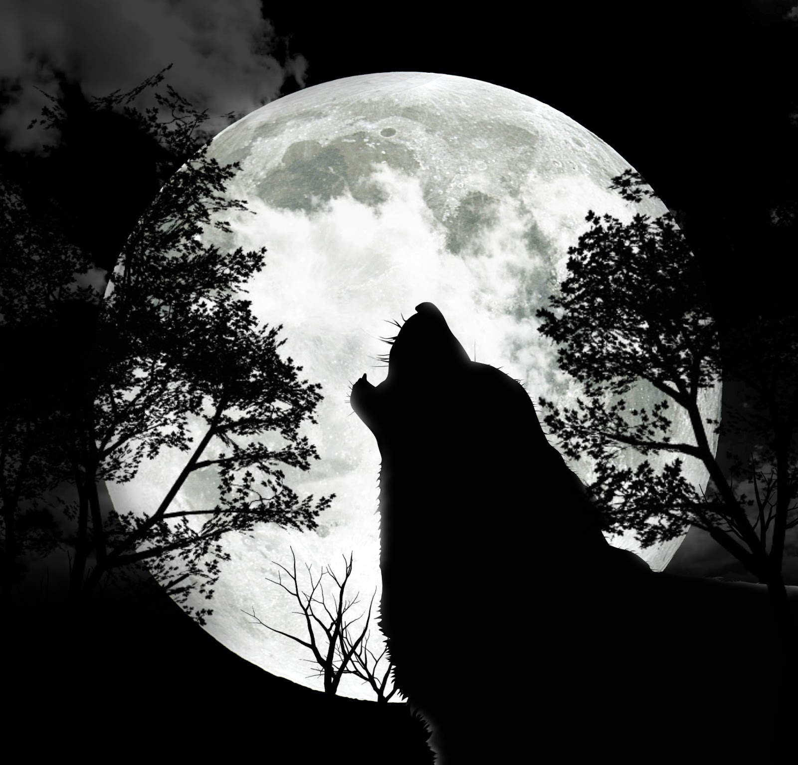 Celebrating The Seasons: January Full Moon-Full Wolf Moon ...
