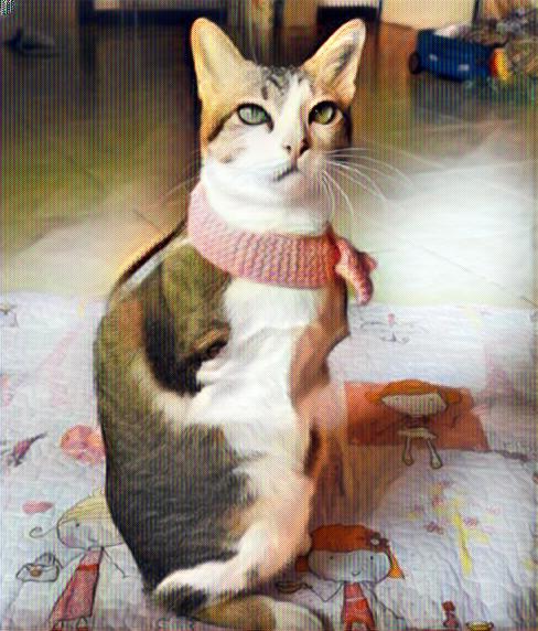 Gato sin patas delanteras