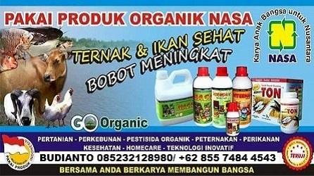 Agen Resmi Pupuk - Vitamin Ternak NASA DI Baguala Ambon 085232128980