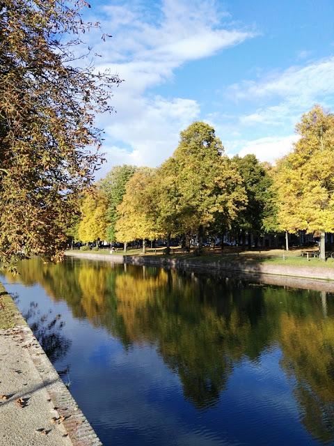 deule lille reflets automne