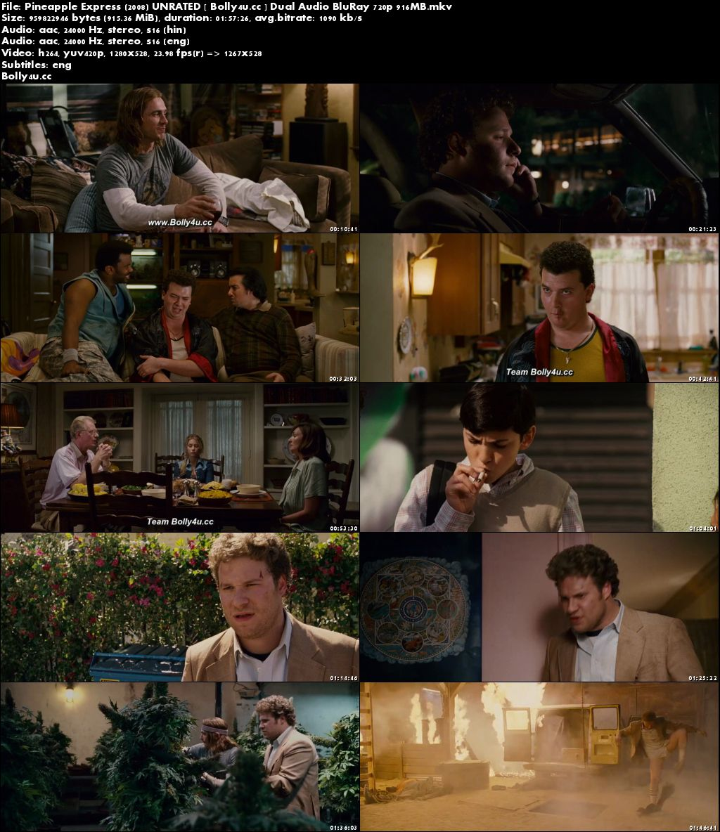 Pineapple Express 2008 BluRay 900MB UNRATED Hindi Dual Audio 720p Download