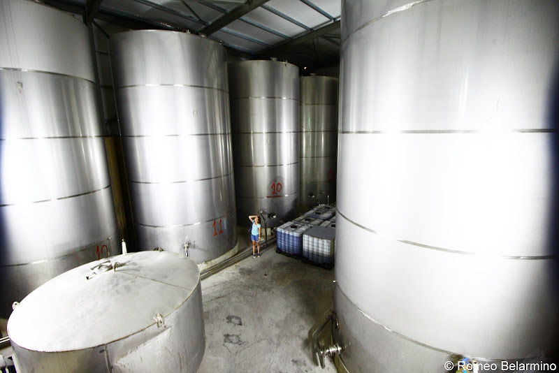 Anoskeli Olive Oil Tanks Things to Do in Crete