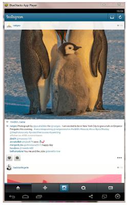 Download Aplikasi Instagram untuk Komputer