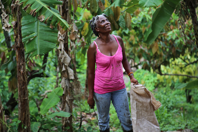 female cocoa farmer, grenada