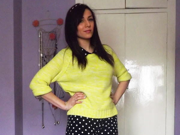 What Cat Wore: Polka Dot Neon