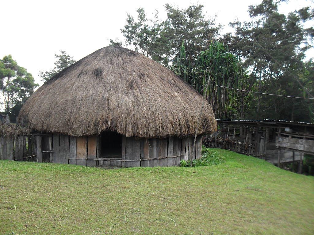 Lukisan Gambar Rumah Adat Papua Wwwtollebildcom