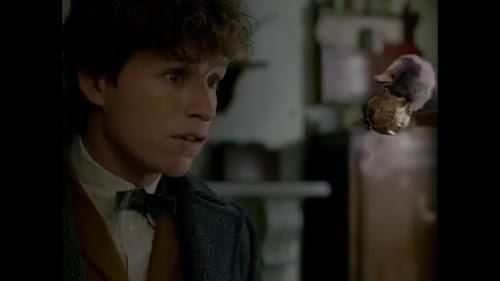 Vídeo: Anúncio da pré-venda dos ingressos para 'Os Crimes de Grindelwald' | Ordem da Fênix Brasileira