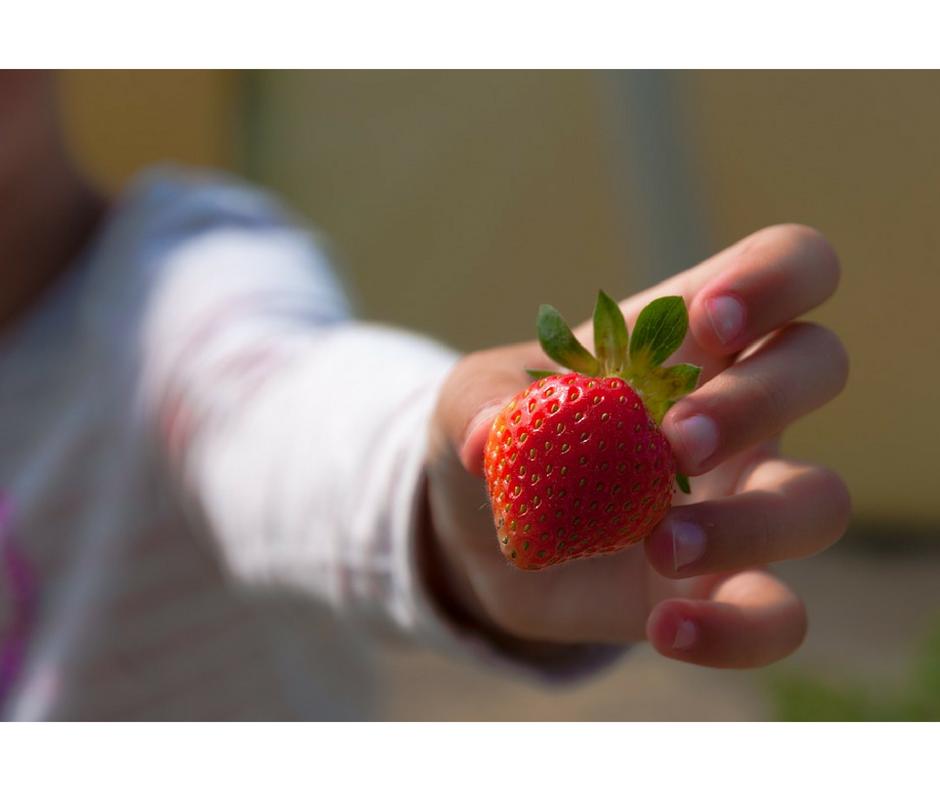 jak nauczyć dziecko jeść owoce i warzywa