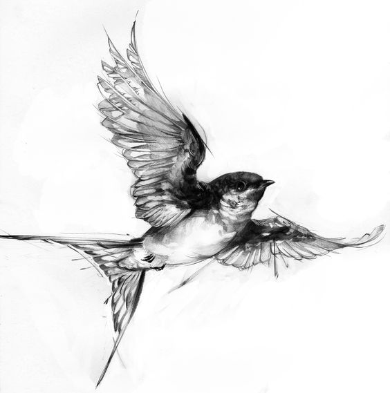 24 lovely swallow tattoos ideas