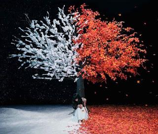 Aimer 『everlasting snow』 歌詞・PV・MV