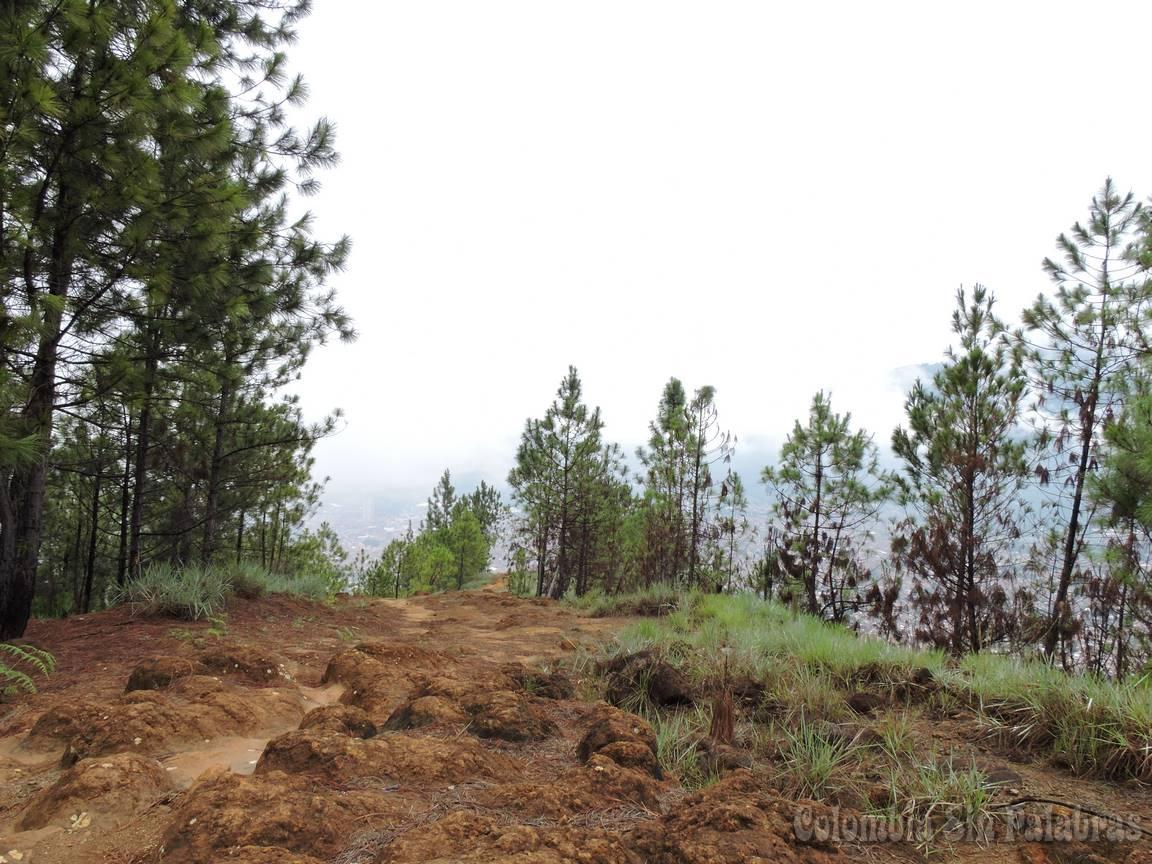 vista desde el cerro quitasol