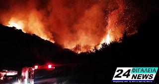 Μάχη με τις φλόγες για πάνω από 6 ώρες μεταξύ Δραγωγίου Ανδρίτσαινας και Περιβολίων Φιγαλείας